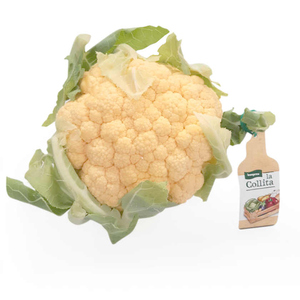 LA COLLITA Coliflor taronja Km0 d'1,2 quilos