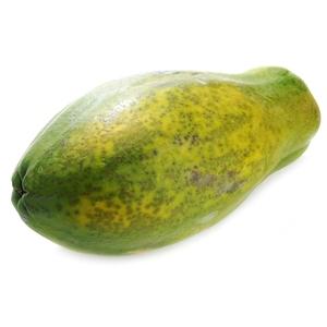 Papaia gegant 1 u.